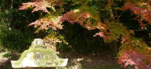 おたまや公園の紅葉