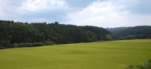 大分県竹田市直入の田園