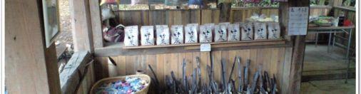碧い海の会にて小さなお店開き