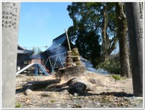 岡神社にて木々への祈り