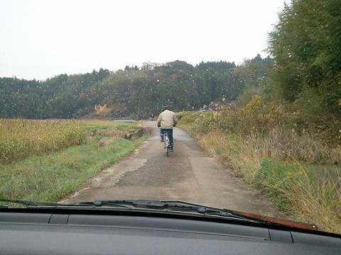 道路の中央を走る自転車