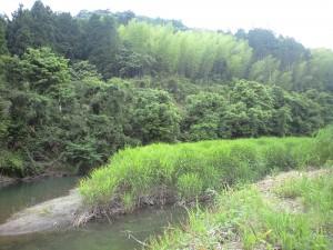 河原内川の空気