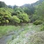 心地よい川の流れを耳に
