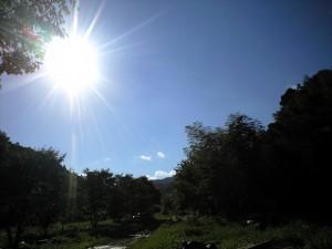 2012年熱い夏